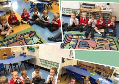 Marshside Primary School
