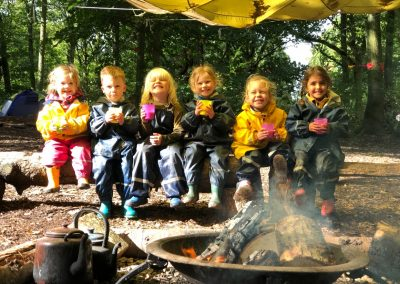 Organic Forest Kindergarten - Saplings Forest School